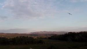 Glaslyn Osprey 4